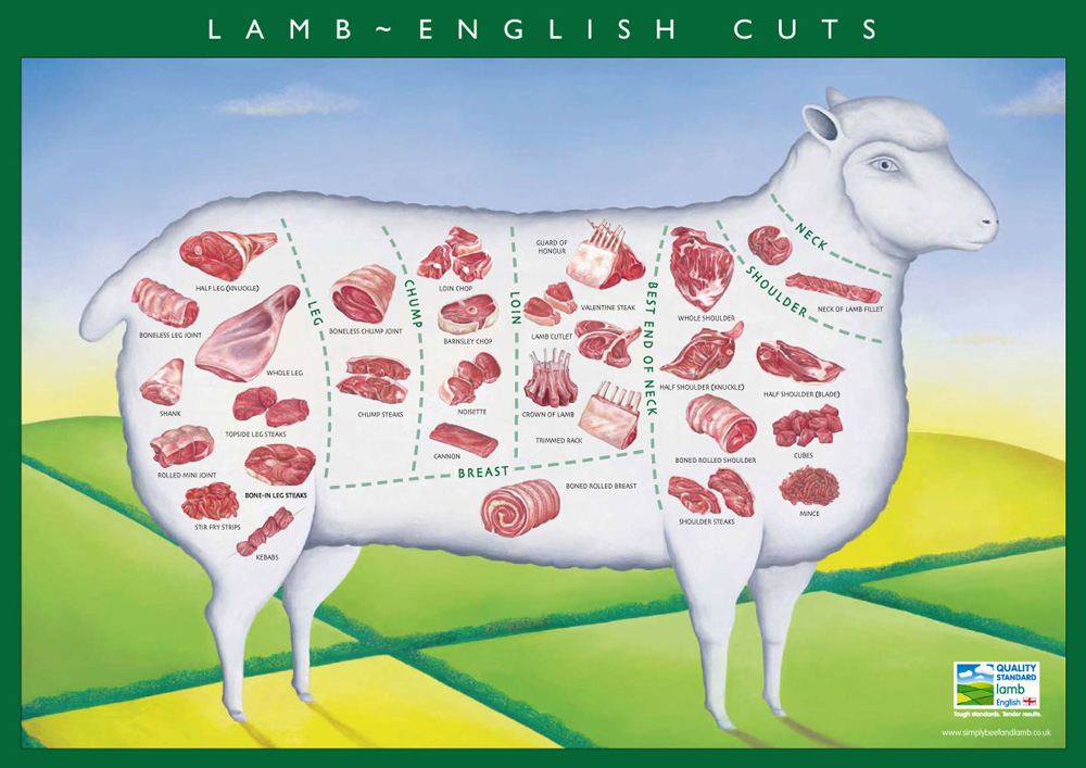 The many cuts of lamb